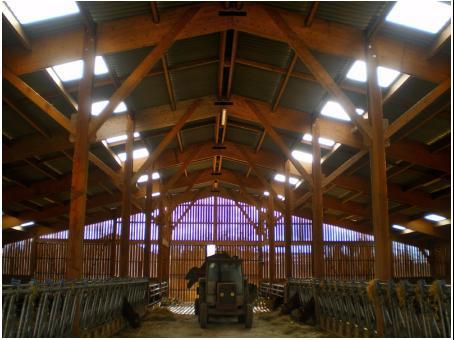 Fabrice Pouget - Construction de bâtiments agricoles en bois  - Fabrice Pouget - Entreprise de maçonnerie Vienne 86 - Vienne 86 - Batiment agricole ovin en bois de douglas de 1080 m2 dans la Vienne